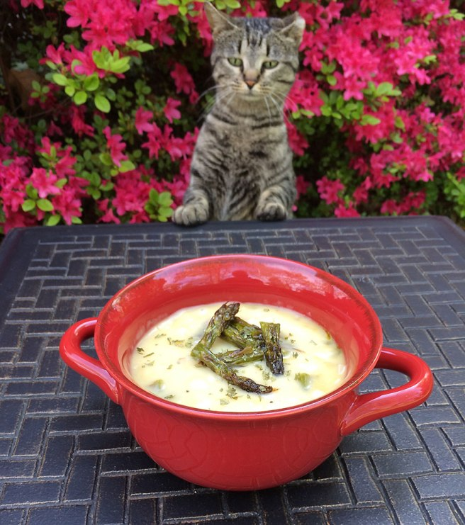 MrsG-Soup