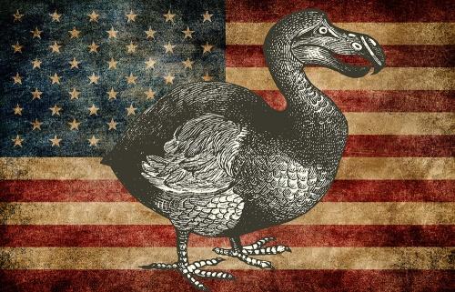 dodoflag